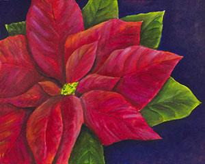 Red Pointsettia I